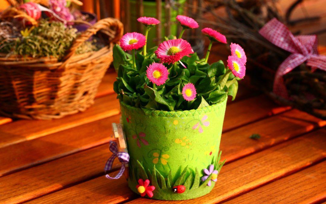 Sprzedaż środków ochrony roślin w sklepie internetowym – jak prowadzić ją zgodnie z prawem