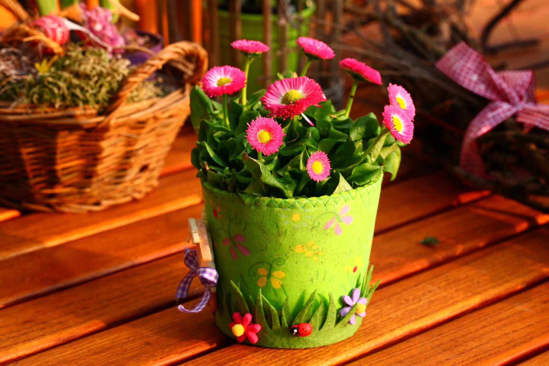 środki ochrony roślin sklep internetowy